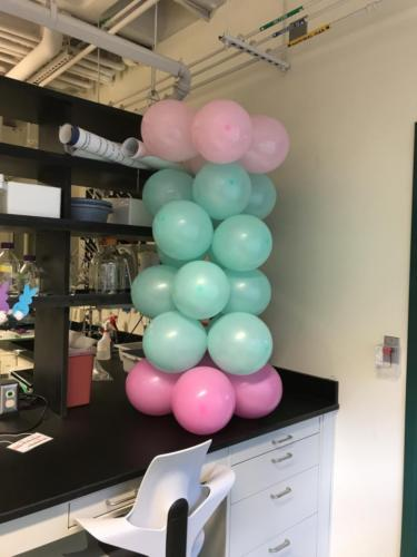 Balloon Proteasome 20S Core