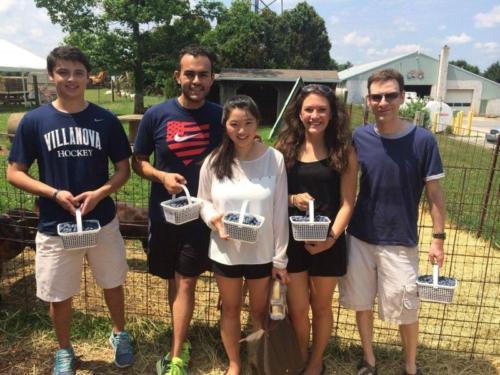 Blueberry picking Summer 2014