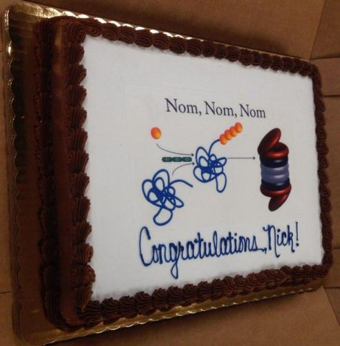 Nick's proteasome cake